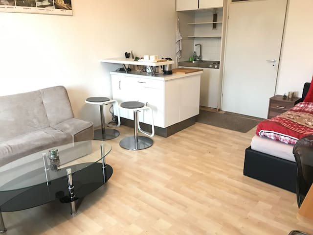 Cosy 1 bdr - with pool,close to subway,Oktoberfest