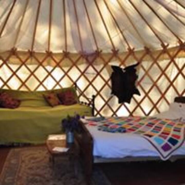 Worcester Glamping - Yurt