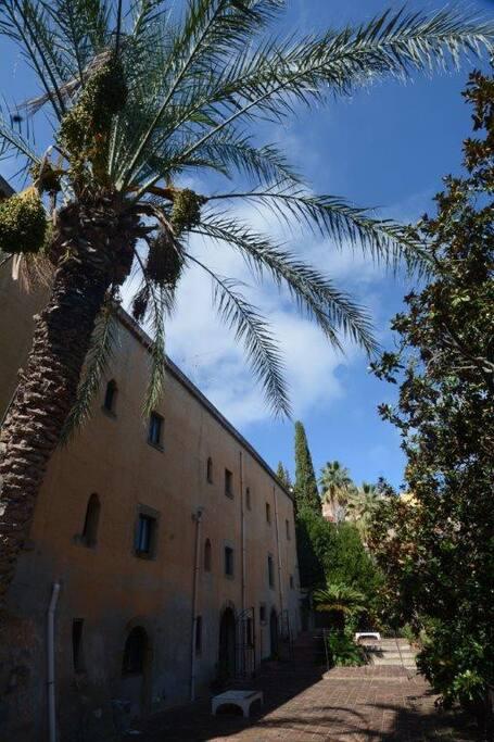 """Palazzo Cangemi, visto dalla """"tua"""" terrazza."""