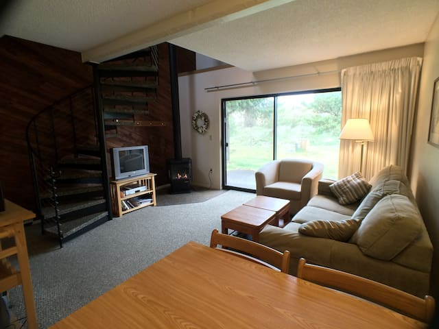 The living area has a propane fireplace, cable tv with blu-ray and dvd/vcr (tv recently replaced) and a sliding glass door to the patio.