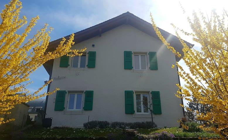 Appartements 2 pièces dans villa à Pully + jardin - Pully - Byt