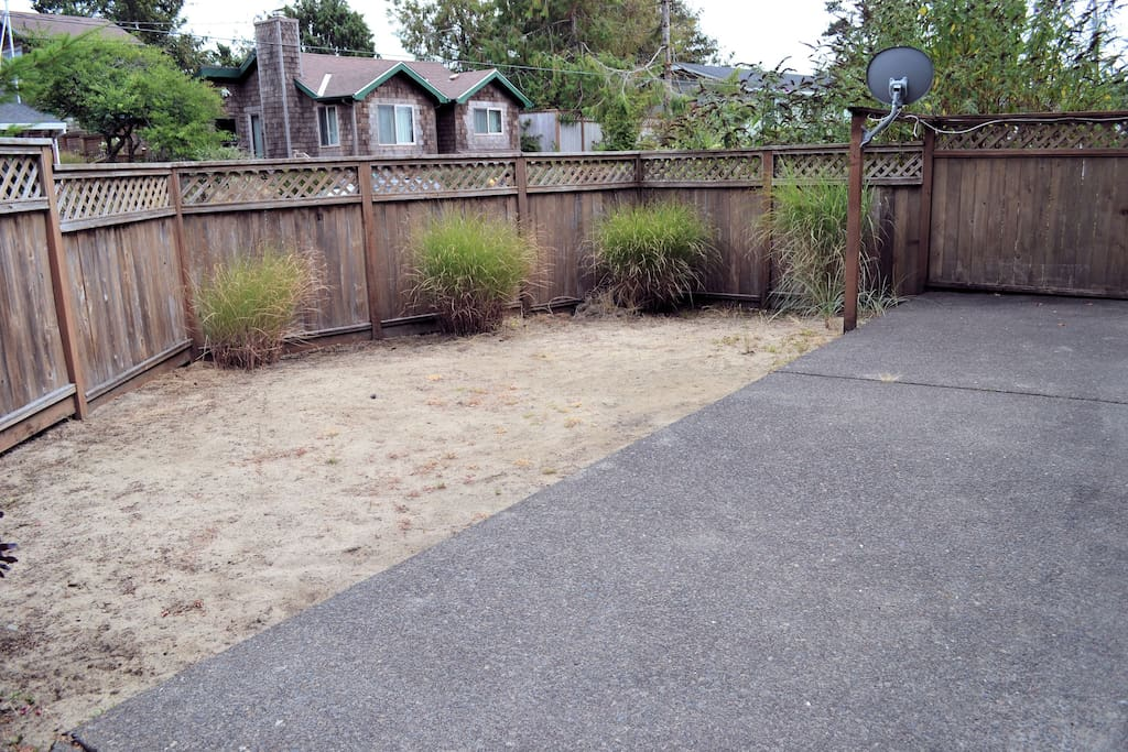 View of the side yard from the side gate