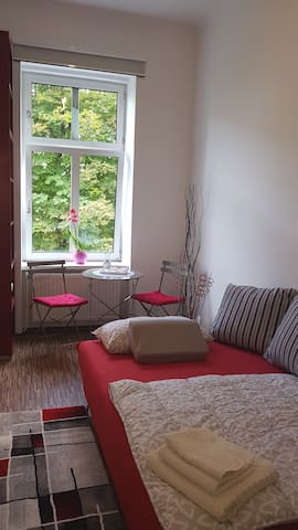 Cosy room with own bathroom in heart of Vienna