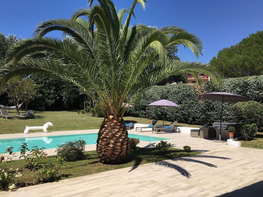 biarritz anglet plages golf pied villas louer anglet aquitaine limousin poitou. Black Bedroom Furniture Sets. Home Design Ideas