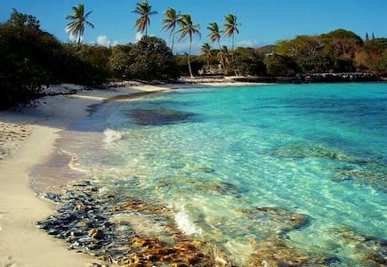 Beachside Beauty - St. Thomas - Lakás