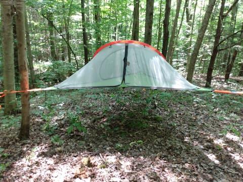 Private Campsite w/1-2 Tree Tents