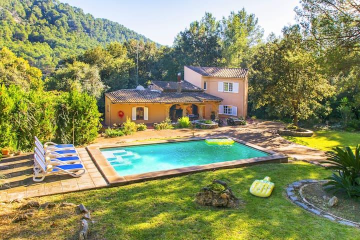 Esteban :) Nice villa in a natural place