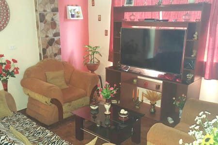 Rooms for rent in an apartment