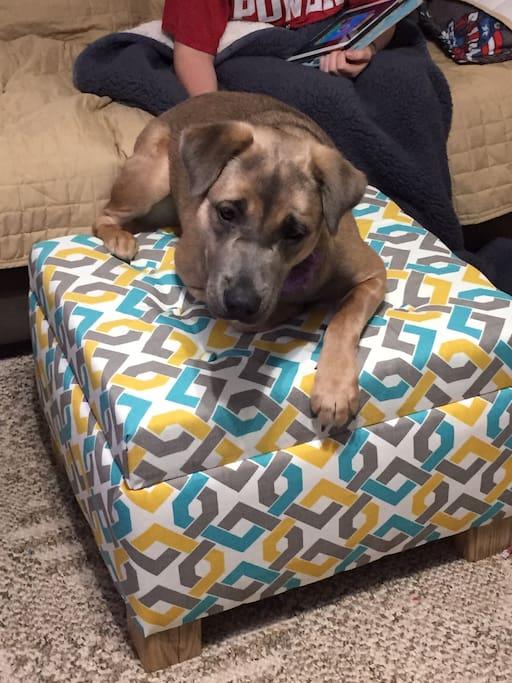 Lily enjoying our ottoman we built!