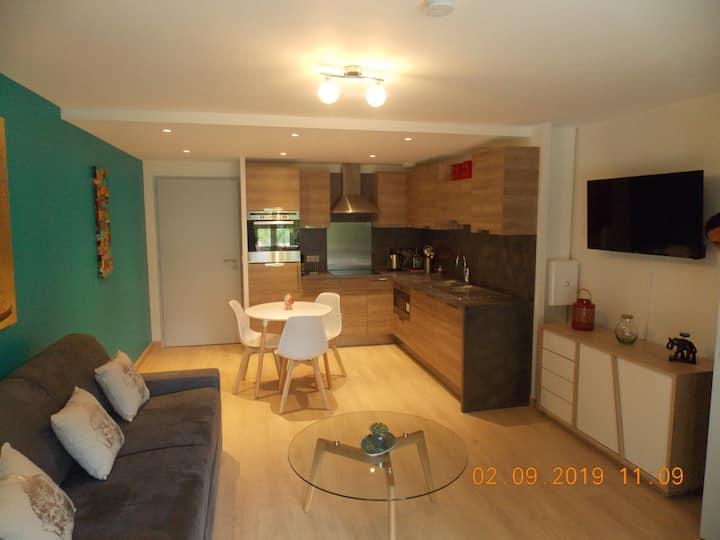Tresserve : Appartement T2 vue sur lac du Bourget
