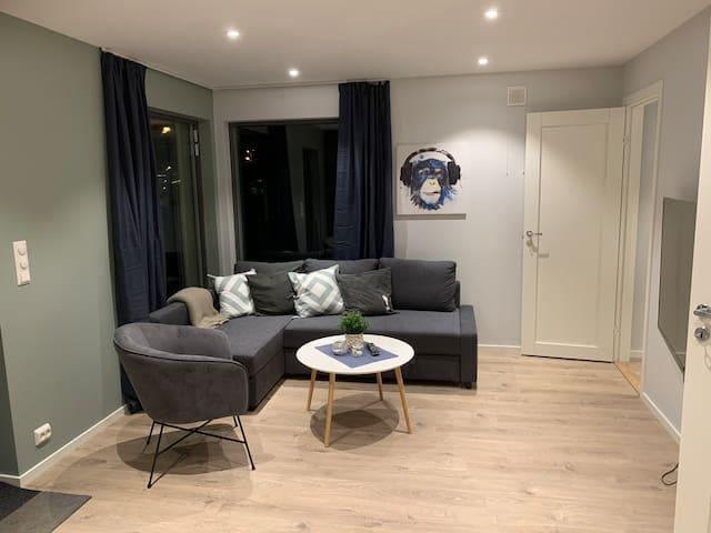 Nybygd leilighet i Sarpsborg