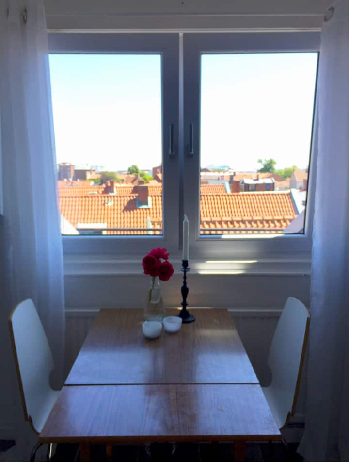 Private flat in city centre with ocean view, Ystad