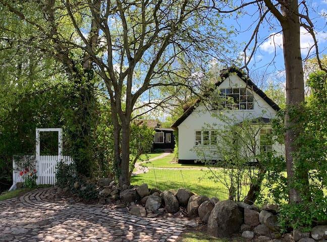 Interior Designer's Cozy Cottage