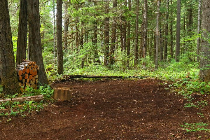 Cascade Valley Camp ***Site #3***
