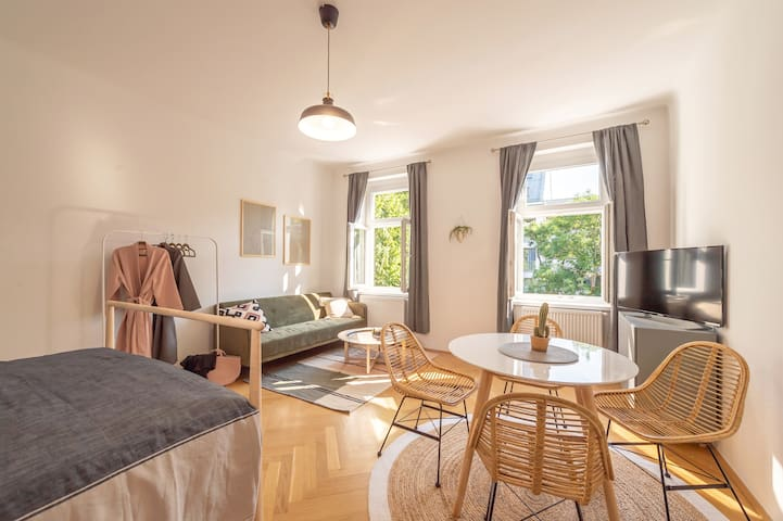 Stunning Studio flat close to the centre of Vienna