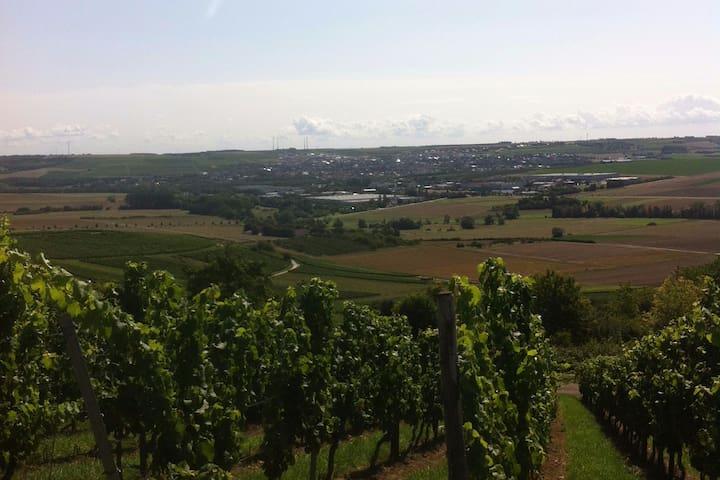 Wohnen auf dem Weingut/ Rheinhessen