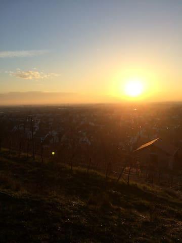 Gemütliche Wohnung bei Heidelberg - Schriesheim - Apartment