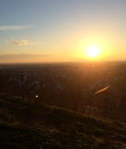 Gemütliche Wohnung bei Heidelberg - Schriesheim