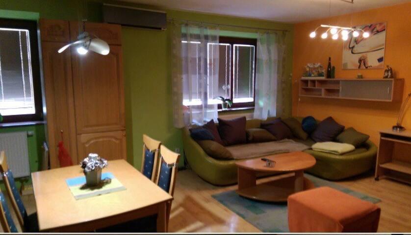 Apartment Zimna