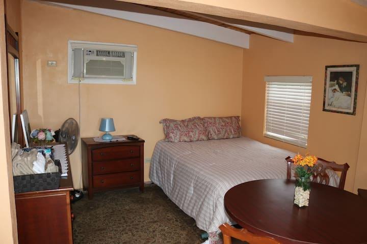 Luxury Single Bedroom Unit