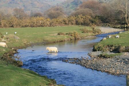 Nantcaw Fawr Self Catering Farmhouse - Gwynedd - House