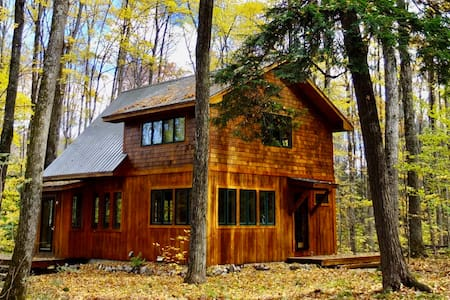 Tranquil Northern Michigan Woodland Cottage