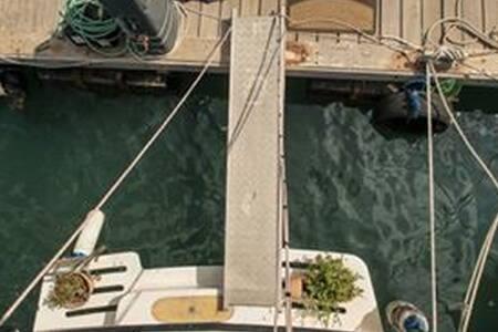 Zehava Motor Yacht - Tel Aviv-Yafo
