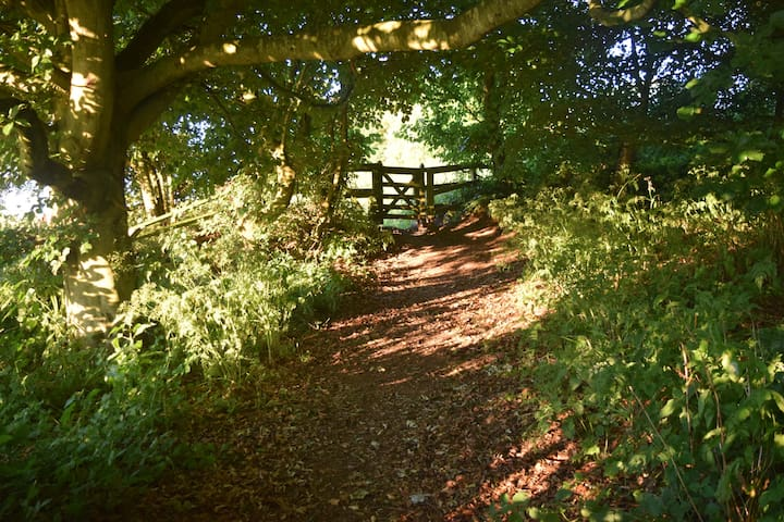 Just one of the country walks you can start from the back of our garden.