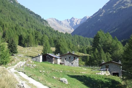 Locanda Val Grande - Vezza d'Oglio - Bed & Breakfast