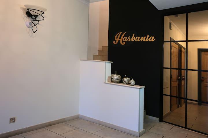 Luxe Hasbania appartement in het mooie Haspengouw
