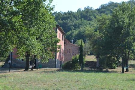 Casale panoramico nel verde toscano - Arcidosso - Wohnung