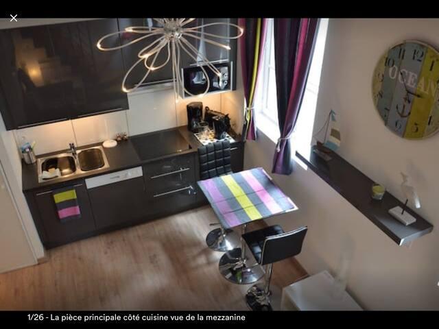 Studio mezzanine neuf  1 à 3/4 personnes centre