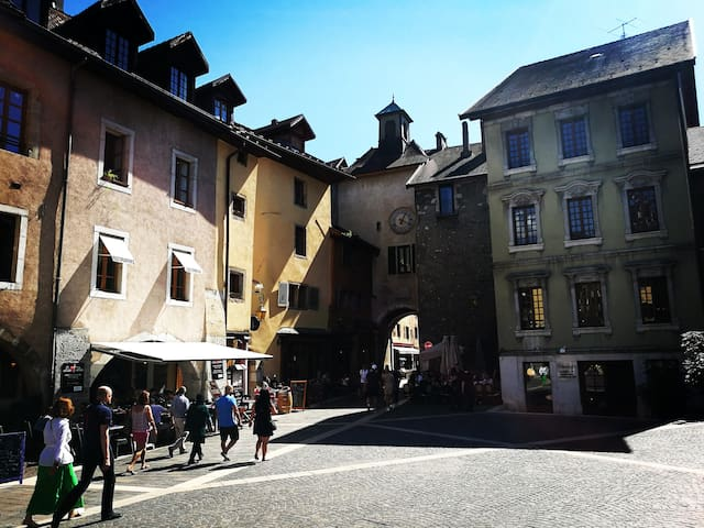APT. MAXIMUM 2 GUESTS IN HISTORIC CENTER ANNECY