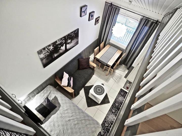Leviloma - majoitus huoneisto  - accommodation