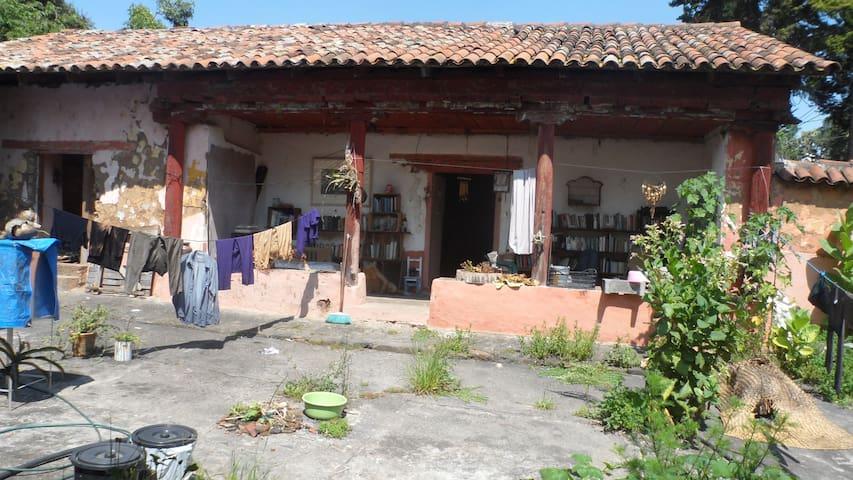 adobe 1910 ecototal - Pátzcuaro - Dom
