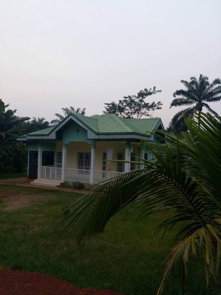 House  in the forest in Cameroon