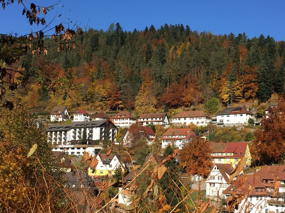 Outside view 2 (Indian Summer, Black Forest edition)