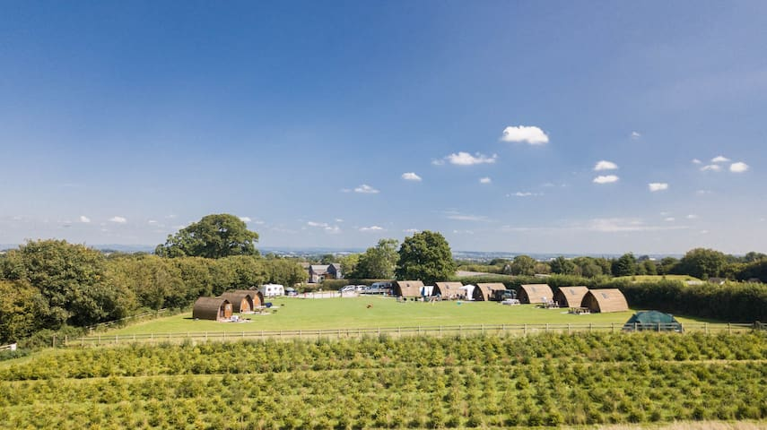 Somerset Glamping with a View