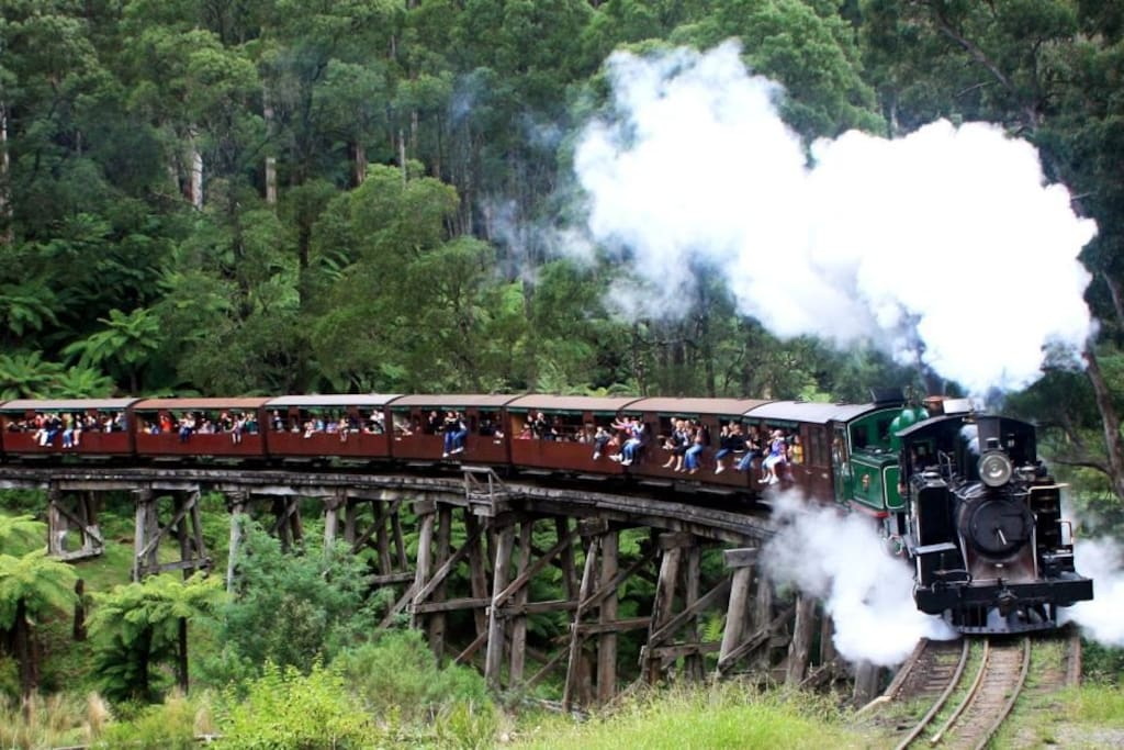 Our wonderful Puffing Billy