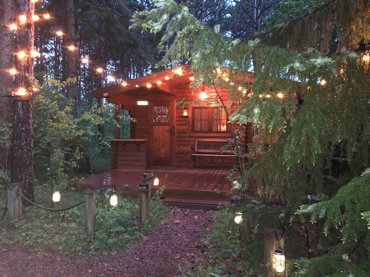 Fancy Fireflies-Charming studio Cabin in Hayward