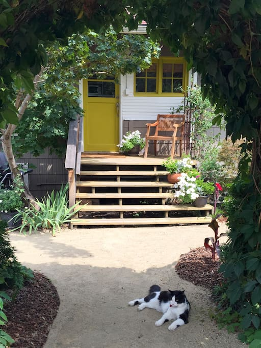 Just Up the Steps to the Bungalow Guest Suite. Theo the Cat Stays Outside But May Come to Greet You.