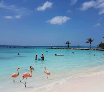 NEW Lagoon Studio # 5 walk to the beach - Oranjestad - Other