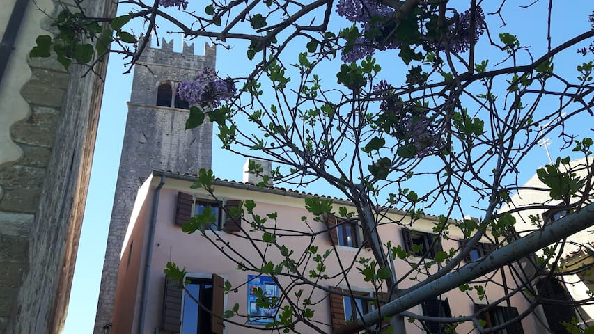 "B&B ""Antico""-double bed room with living room - Motovun - Bed & Breakfast"