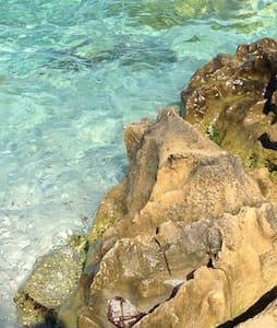 Sardinia for your holidays - Cabras