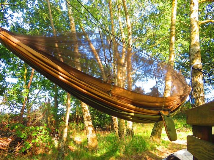 Slapen onder de sterren - in een hangmat