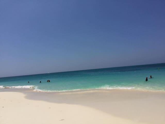 One Happy Island- Aruba Rental Week 40 - 10/2-10/9