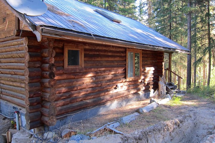 The quaint cabin built from trees grown on the land