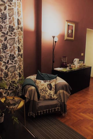 Davide and Davina - Single Bedroom - Firenze - Apartment
