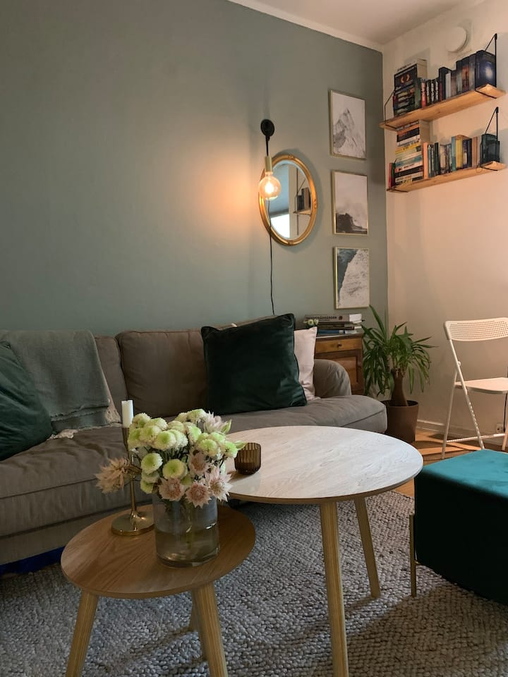 Small and cozy appartment at Sagene in Oslo
