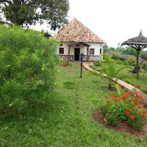 Vacances Ecologiques à la campagne Rwandaise